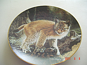 Hamilton Exploring A New World Small Wonders Wild Collector Plate