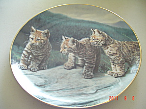 Hamilton Three Of A Kind Small Wonders Wild Collector Plate