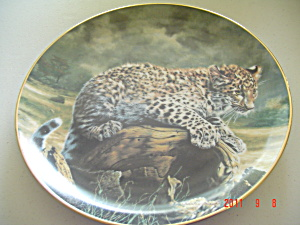 Hamilton Quiet Morning Small Wonders Wild Collector Plate