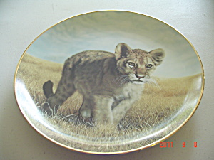 Hamilton Young Explorer Small Wonders Wild Collector Plate