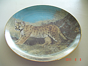 Hamilton Ready For Adventure Small Wonders Wild Collector Plate