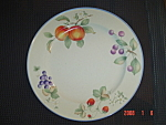 Click here to enlarge image and see more about item 2370: Mikasa Savoir Vivre Luscious Dinner Plates
