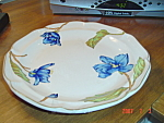 Click here to enlarge image and see more about item 3938: Sango Sangostone Blue Magnolia Dinner Plates