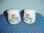 Corelle Fresh Cut Salt/Pepper Shakers - Jay Imports