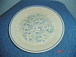 Click here to enlarge image and see more about item 5168: Lenox Temperware Dewdrops Dinner Plate - Very Nice