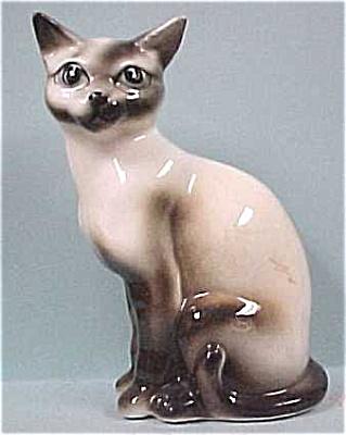 Arnart Siamese Cat (Image1)