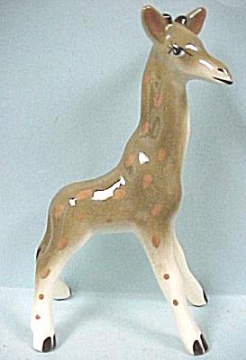 Robert Simmons Giraffe Named Ishki (Image1)