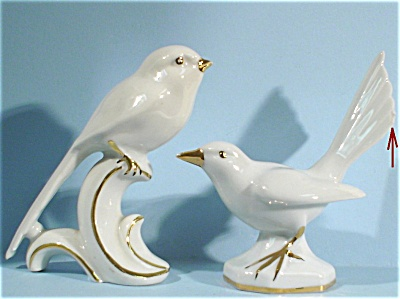 Pre 1950 E&r Made In Germany Porcelain Bird Pair