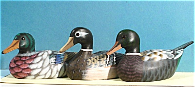 Plastic Duck Trio