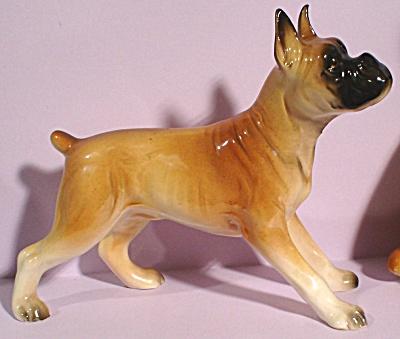 1950s/1960s Boxer Dog (Image1)
