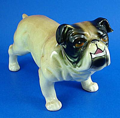 1950s/1960s G Novelty Japan Ceramic Bulldog (Image1)