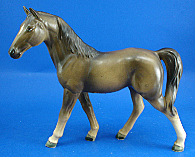Ucagco Japan Tennessee Walking Horse