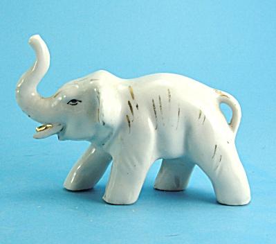 Japan White Elephant (Image1)