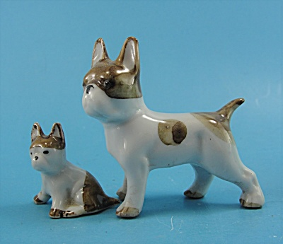 Bull Terrier Dog with Sitting Puppy (Image1)