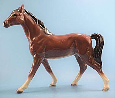 Bay Walking Horse Mexico (Image1)