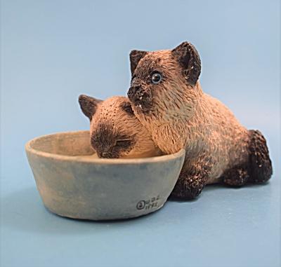 Siamese Kit Pair w/milk bowl (Image1)