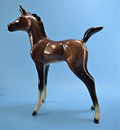 Goebel Arabian Foal (Image1)