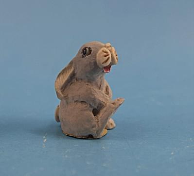 Tiny Scotland Bunny Fagan (Image1)