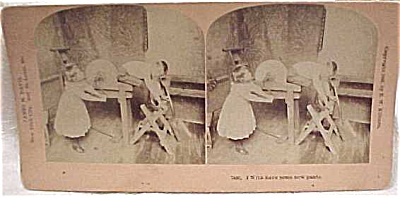 1892 B.W. Kilburn Stereoview #7466 Children (Image1)
