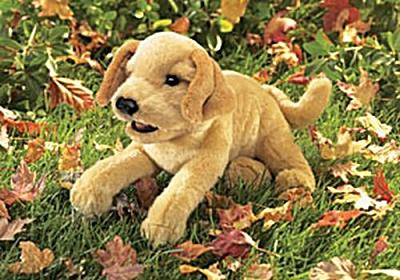 Folkmanis Hand Puppet Yellow Labrador Puppy (Image1)