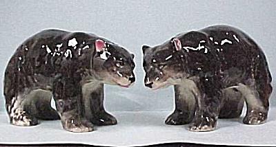 Black Bear S/P set (Image1)