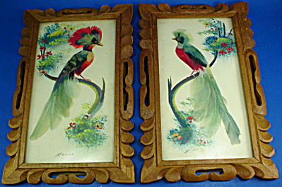Vintage Feather Art Bird Picture Pair