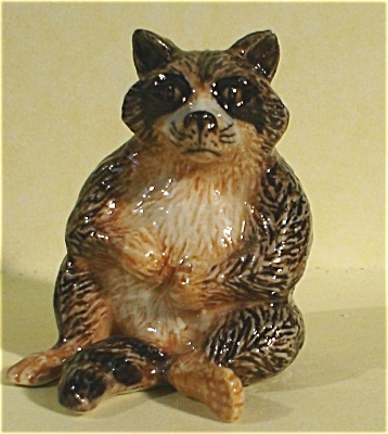 K5482b Raccoon (Image1)
