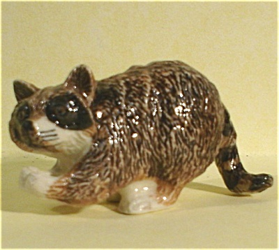 K5482c Raccoon (Image1)