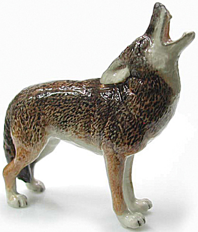 R019 Howling Coyote (Image1)