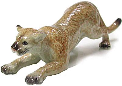 R045r Crouching Cougar (Image1)