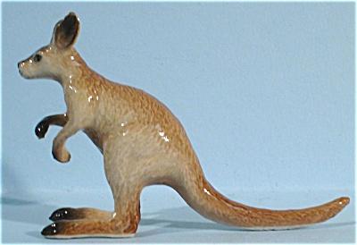 K4752 Juvenile Kangaroo (Image1)