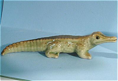E3561a Baby Crocodile (Image1)
