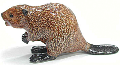 R210 Beaver (Image1)