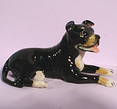 K9401 Lying Staffordshire Bull Terrier