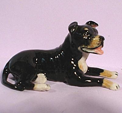 K9401 Lying Staffordshire Bull Terrier (Image1)