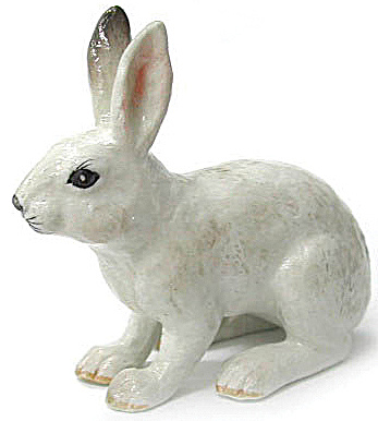 R105 Snowshoe Hare