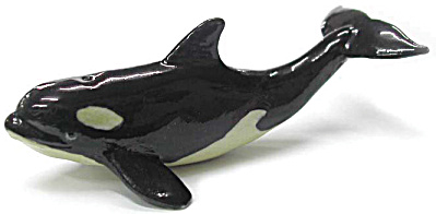 R240 Baby Orca Whale
