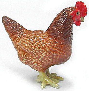 R250 Rhode Island Red Chicken