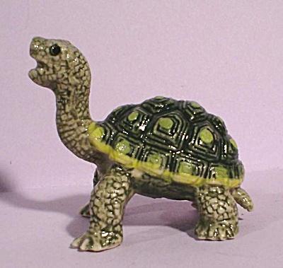 K5122 Small Tortoise (Image1)