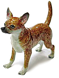 R153a Chihuahua (Image1)