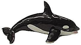 R111r Killer Whale (Image1)