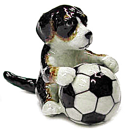R246b Puppy With Soccer Ball