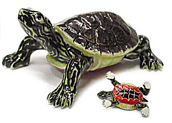 R171b Baby Painted Turtle