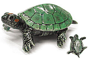 R171A Baby Green Turtle (Image1)