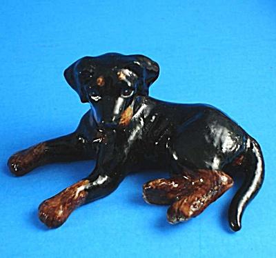 K984 Lying Beauceron Puppy (Image1)