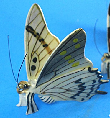 K893 White Butterfly (Image1)