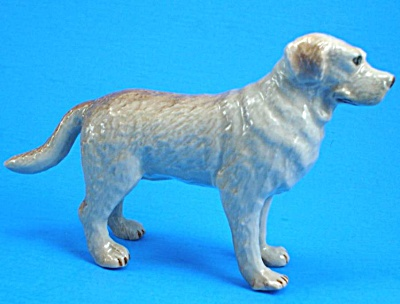 B0781 Yellow Labrador Retriever Dog (Image1)