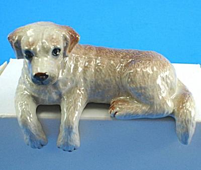 B0781 Ledge Lying Yellow Labrador Retriever Dog (Image1)