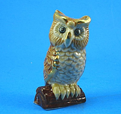 E232 Owl On Branch