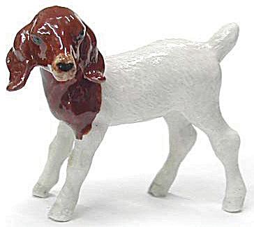 R215B Goat Kid (Image1)